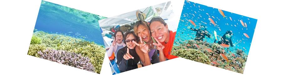 石垣島・体験ダイビング