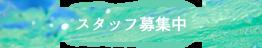 西表島カヌー&トレッキングツアー|サニーデイ ブログ