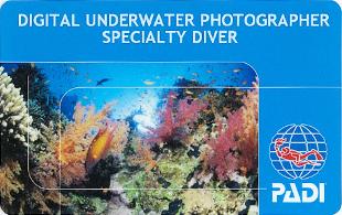 デジタル水中フォトグラファー